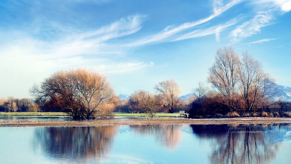 trees-landscape-wallpaper-2560x1440.jpg
