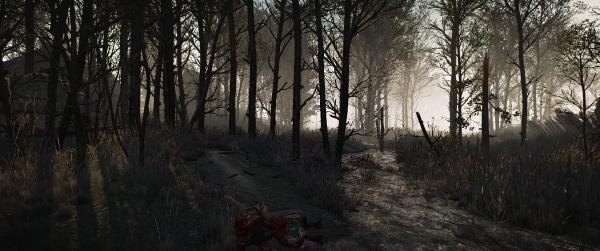 The Witcher 3 Screenshot 2020.02.12 12.05.56.05